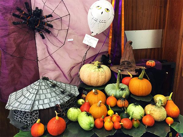 pumpkin-show-abjpg