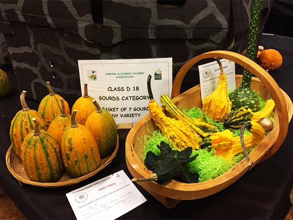pumpkin-show-c